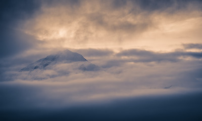 Turnagain Mountain Mist