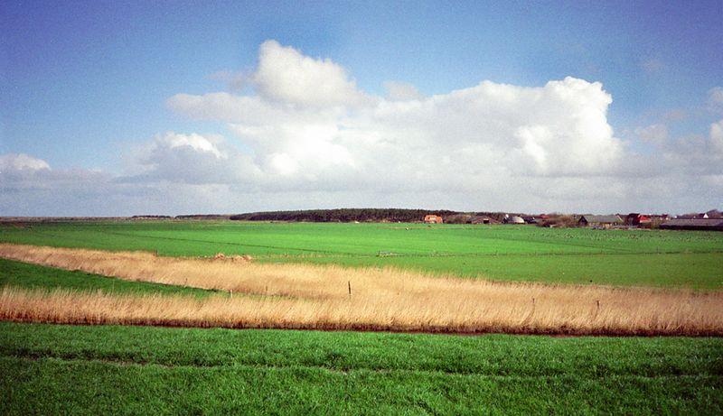 Briks duinen