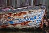 Rotting boat hull, Seabrook, Texas 11-23-09