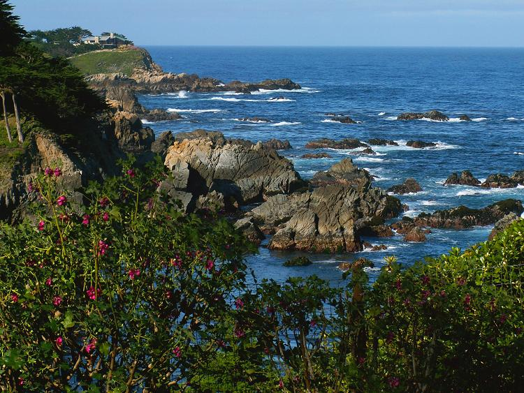 May 30, 2006. Big Sur Coastline, just south of Monterrey, California. It was scenes like this I had enjoyed from magazines that brought me to Big Sur, along with the proximity of my recently relocated son to the Bay Area. What I did not expect was a wonderful interactive experience with California Condors further south from here that enriched my life. (See California Condor Gallery)