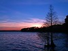 "My first published photo, taken at sunset on March 28, 2005 at Lake Houston. I experimented with with white balance settings during this shoot and this photo was set on ""flouescent light"" instead of sunlight. It made the blues bluer and the reds a little more pink. This was the cover photo of a free advertising calendar issued in the North Houston Metro area that had 100,000 copies circulated."