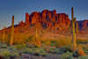 A Desert Frame - Lost Dutchman State Park, The Superstition Mountains, Arizona