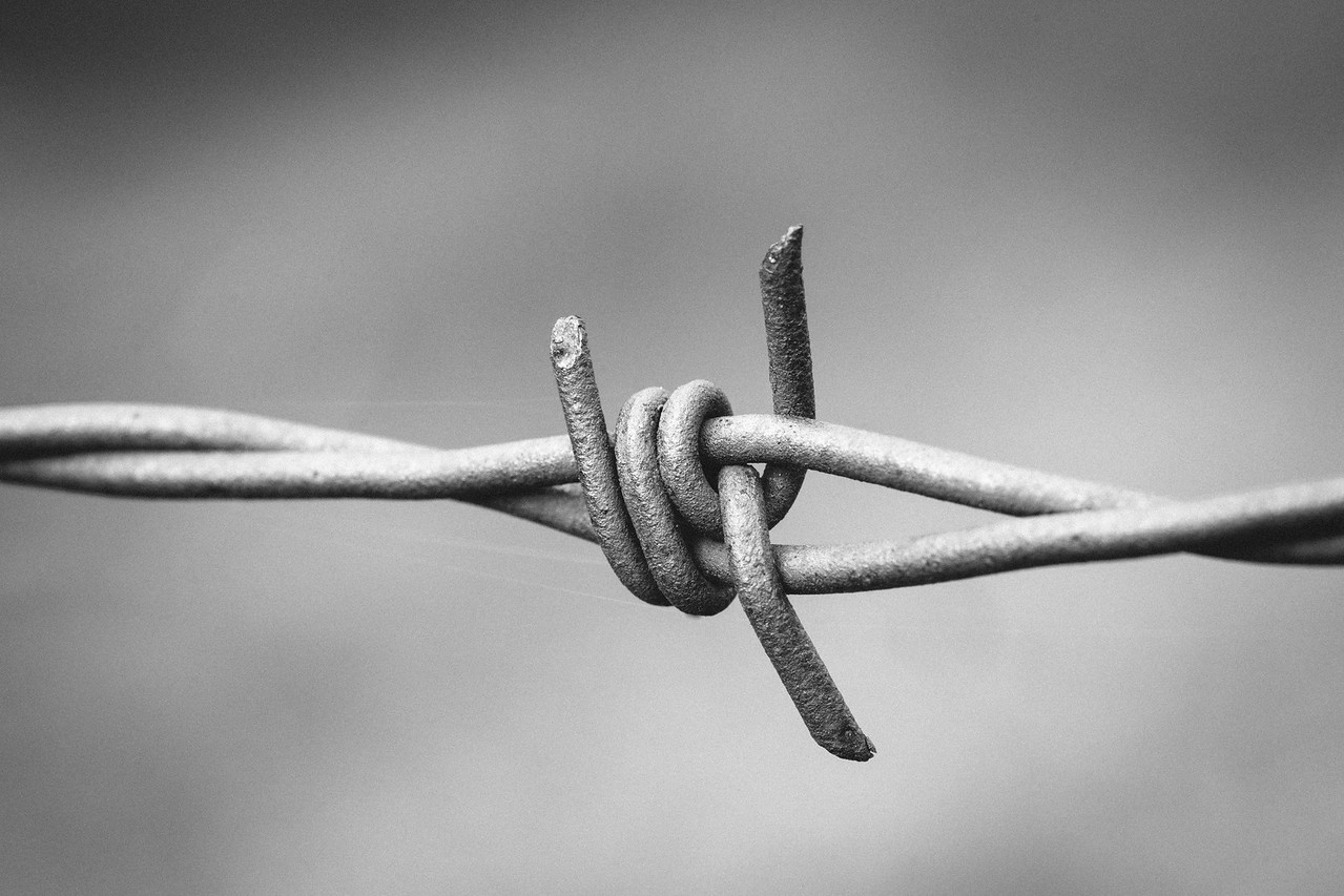 Black and White Barbed Wire
