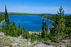 Hillside of pine trees overlooks the deep blue water of Yellowstone Lake.