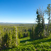 Vista in Yellowstone National Park