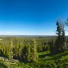 Yellowstone Vista Panorama