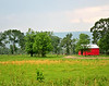 Farm with Red Barn<br /> Albion, Oklahoma<br /> 055-6346a