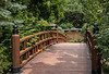 Foot Bridge-1