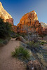 The West Rim Trail begins which takes you to Angel's Landing.