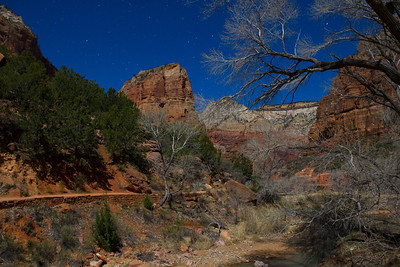 91 second time exposure, ISO 400 @f5.6, taken at 1AM under moonlight on March 25, 2013 . Angel's Landing towers over the start of the West Rim Trail. Zero wind kept the image sharp.