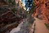 This is aptly named Refrigerator Canyon. The tight canyon retains the night chill very well and really is a lot cooler than the rest of the trail.