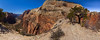 Another panorama of the approach trail from Scout Lookout, the point at the top of Angel's Landing. This is about 300 degrees of viewing angle.