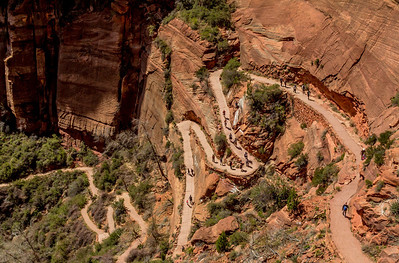Approach trail to the lower section of the Angel's Landing experience.
