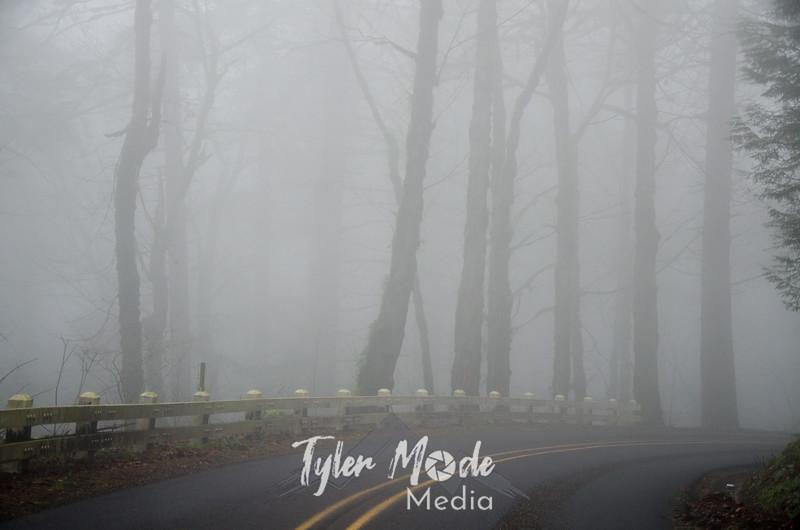 15  G Foggy Gorge