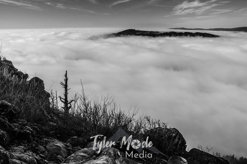 191  G Above Fog BW
