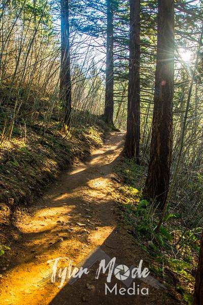 13  G Trail Sun V
