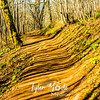 86  G Trail Shadows