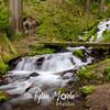 32  G Wahkeena Creek and Hikers
