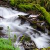 11  G Wahkeena Creek