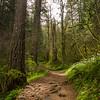 65  G Wahkeena Trail V