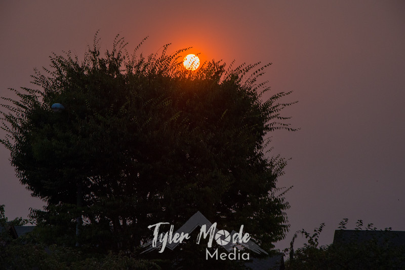 3  G Smoky Sunrise