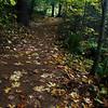 76  G Trail View V