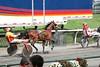 IMG_9059  horse race
