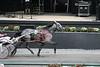 IMG_9058  horse race