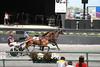 IMG_9063 horse race