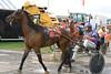 IMG_9087 horse race