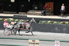 IMG_9062 horse race