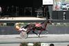 IMG_9061 horse race