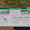 On my way to Cinnamon Pass (The road that led to Handies) I passed by the old abandoned mining town, Animas Forks. This sign gives a brief history of the town.