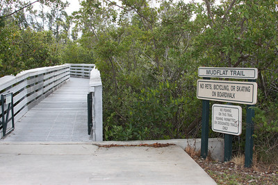 Ann Kolb Nature Center, Hollywood, Fla., Dec. 26, 2010