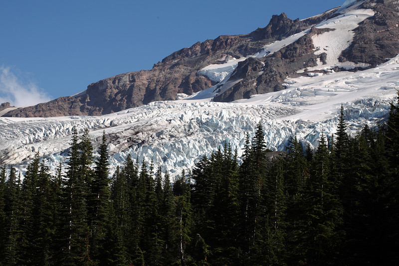 Coleman Glacier from Heliotrope Trail