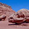 Dinosaur Skull Rock!