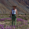 Coyote Canyon near Borrego Springs is very easy to reach by ordinary car. Not sure who the beautiful woman is. She just smiled at me in the middle of that patch of wildflowers. She took my picture too. She's staying with me for the duration of the voyage. She's a keeper! :o) Yes, that's Maggie. This is my favorite snapshot of her over the long weekend. This one shows the scale of these fragile brief blooms of wildflowers and to gives you sense of the desert setting. E-3 & 50 mm, f/11, 1/125 sec. ISO 200