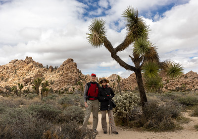 Joshua Tree National Park  Spring, 2020