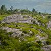 Appalachian Trail near Wilburn Ridge in the Mt. Rogers NRA