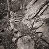 Appalachian Trail Thunder Hill Relocation (LWBW)