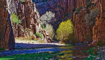 """Illuminations"", Aravaipa Canyon Wilderness, Arizona"