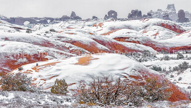 27.  Snow On The Petrified Sand Dunes