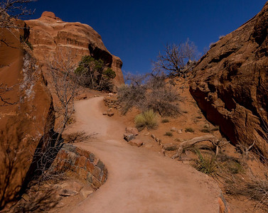 As hiking paths go, the first part of Devil's Garden Trail is an Interstate. It does not stay that way.