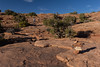 Trail to Delicate Arch, which goes over big sections of solid, open rock in spots.