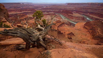 Dead Horse Point, a Utah state park close to the entrance of Canyonlands National Park.