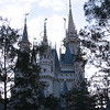 Walt Disney's Magic Kingdon