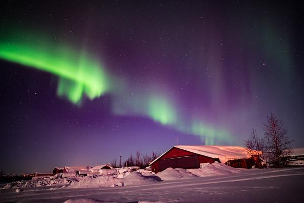 Arctic Auroral Displays - Bettles, Alaska
