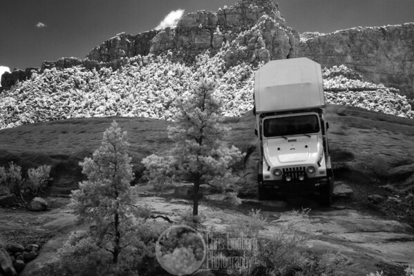 Signature drop on Pink Jeep's Broken Arrow jeep tour.  Why yes, that is an IR picture...  Does it show?