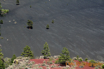 The nearly barren slope of Sunset Crater Volcano.