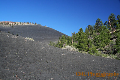 Sunset Crater Volcano is the farthest back slope on the left.